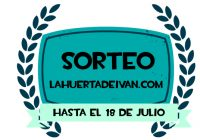 sorteo youtube