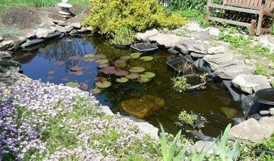 estanque casero