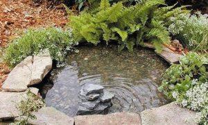 Como hacer un estanque con un neumatico la huerta de ivan for Como cultivar tilapia en estanques
