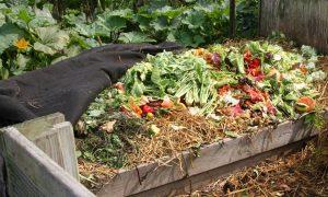 compostaje casero