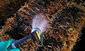 cultivar en fardos de paja