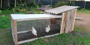 como hacer un gallinero