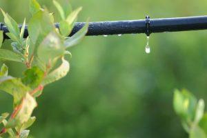 sistema de riego por goteo