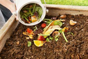 compost fresco usos
