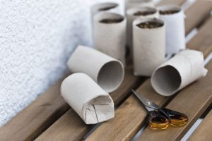 semillero carton reciclado