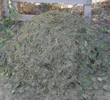 compost con cesped